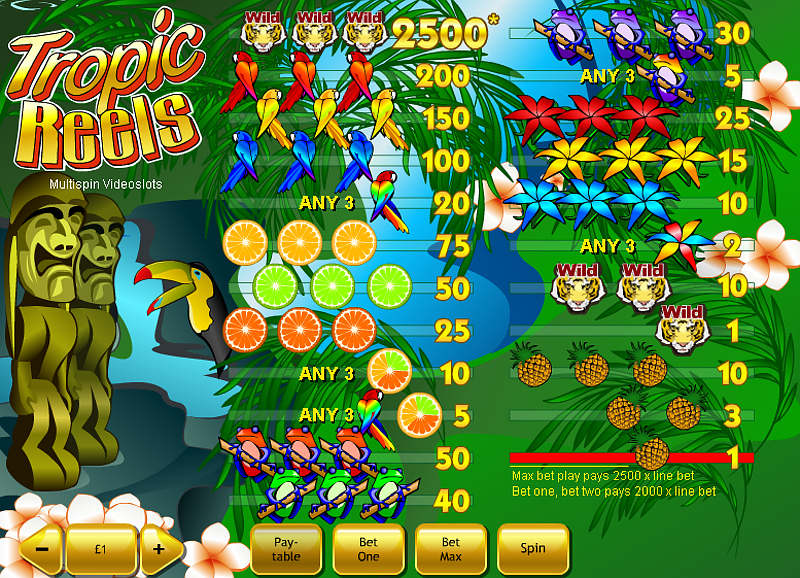 Tropic Reels slot payout and win combinations
